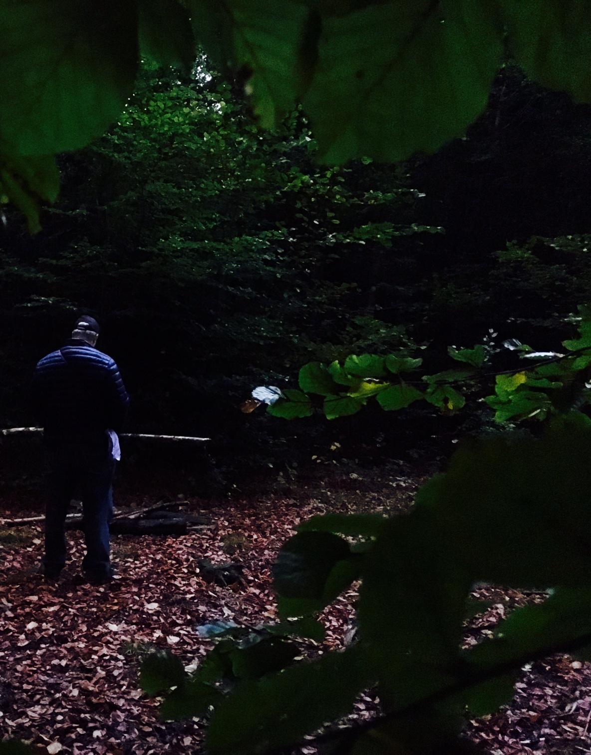 Herbstliches Loslassritual
