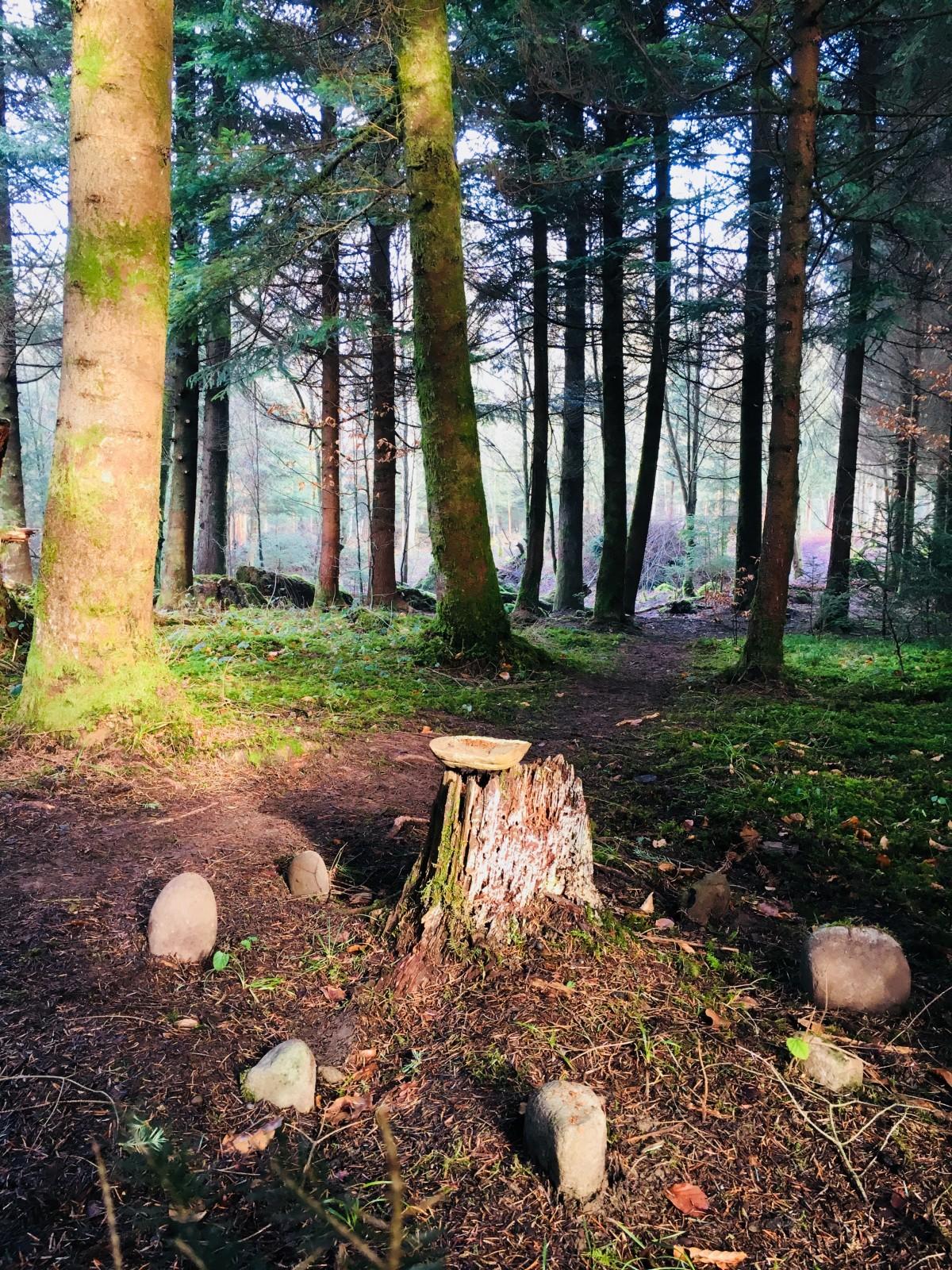 Ein Ritualplatz kann ein bestimmter Ort sein, allem voran aber ist es ein Bewusstseinszustand